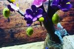 Albero di Pasqua personalizzabile