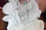 Baby Fiorella