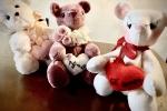 Orsetto San Valentino