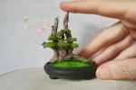 Bonsai in miniatura in pasta polimerica termoindurente