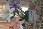 Centrotavola fiori uncinetto