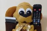 Cucciolo cane porta telecomando