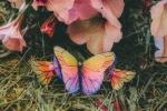 Fermaglio con farfalle arcobaleno