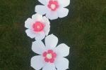 Fiori di carta bianchi e rosa