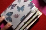 Midori in feltro contenente 4 quaderni 11x8