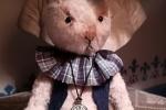 Orsetti da collezione/ teddy bear