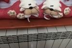 Paraspifferi con i gatti