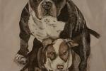 Ritratti cane su stoffa
