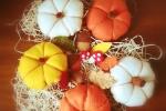 Sapori d'autunno zucche realizzate in pannolenci