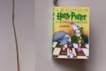 """Segnalibro """"Harry Potter e la Pietra Filosofale"""""""