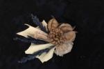 Spilla con fiori secchi