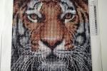 Tela diamond painting 5d leone