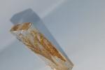 Xmas carol - Un rametto dorato incluso in resina